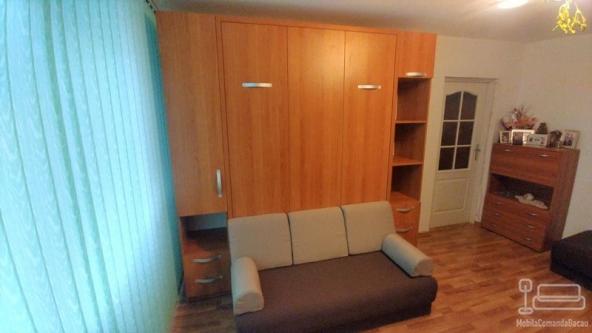 Dormitor cu Pat rabatabil cu canapea D 292