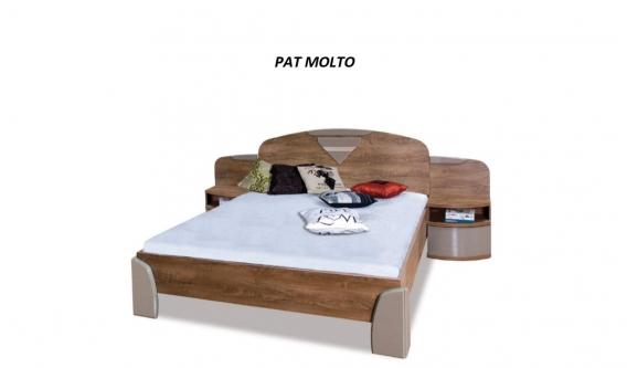 PAT MOLTO