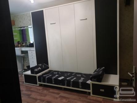 Dormitor cu Pat Rabatabil si Canapea D 354