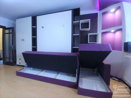 Living cu pat rabatabil cu Canapea D 312